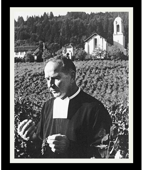 Vineyard-1
